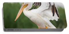 The Amazing American White Pelican  Portable Battery Charger