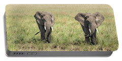 Portable Battery Charger featuring the photograph The Pair by Pravine Chester