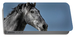 The Stallion Portable Battery Charger