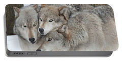 Three Wolves Are A Crowd Portable Battery Charger by Gary Slawsky