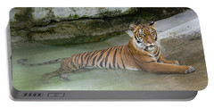 Portable Battery Charger featuring the photograph Tiger by John Black
