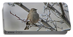 Townsend's Solitaire Portable Battery Charger