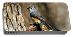 Tufted Titmouse On Branch Portable Battery Charger