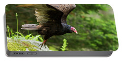 Portable Battery Charger featuring the photograph Turkey Vulture by Mircea Costina Photography