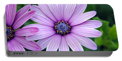 The African Daisy 3 Portable Battery Charger