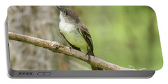 Warbler Portable Battery Charger