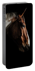 Warmblood Portable Battery Charger