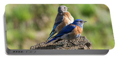 Western Bluebird Pair Portable Battery Charger