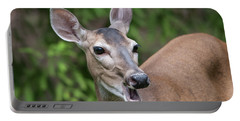 White Tailed Deer No. 2 Portable Battery Charger