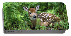 White-tailed Deer Odocoileus Portable Battery Charger