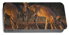 Whitetail Deer At Waterhole Texas Portable Battery Charger