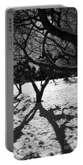 Portable Battery Charger featuring the photograph Winter Shadows by Yulia Kazansky