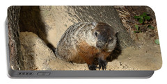 Woodchuck Portable Battery Charger by Ted Kinsman