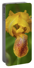 Portable Battery Charger featuring the photograph Yellow Bearded Iris by Brenda Jacobs