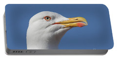 Yellow-legged Gull - Larus Michahellis Portable Battery Charger