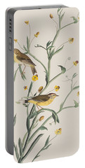 Yellow Red-poll Warbler Portable Battery Charger by John James Audubon