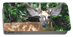 Young Buck Outside My Kitchen Window Portable Battery Charger by Betty Pieper
