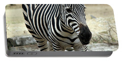 Zebra Portable Battery Charger by Suhas Tavkar