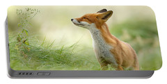 Zen Fox Series - Zen Fox Portable Battery Charger