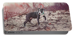 Portable Battery Charger featuring the photograph American Pitbull  by Peter Lakomy