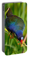 Purple Gallinule Portable Battery Charger