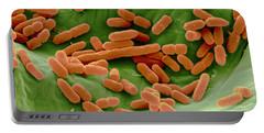 Sem Of E. Coli Bacteria On Lettuce Portable Battery Charger
