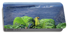 Portable Battery Charger featuring the photograph 100960 Ferns And Halemaumau Crater Kilauea Caldera Hi by Ed Cooper Photography