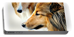 The Collie Portable Battery Charger