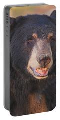Black Bear  Portable Battery Charger