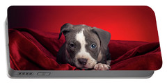 Portable Battery Charger featuring the photograph American Pitbull Puppy by Peter Lakomy