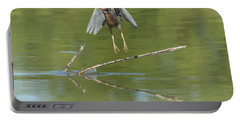 Portable Battery Charger featuring the photograph Green Heron by Tam Ryan