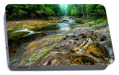 Portable Battery Charger featuring the photograph Williams River Summer by Thomas R Fletcher