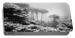17 Mile Drive Cyprus Tress  Portable Battery Charger