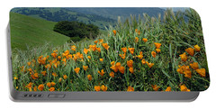 1a6493 Mt. Diablo And Poppies Portable Battery Charger