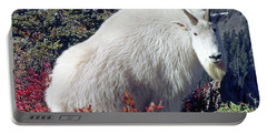 1m4900 Mountain Goat Near Mt. St. Helens Portable Battery Charger