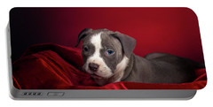 American Pitbull Puppy Portable Battery Charger