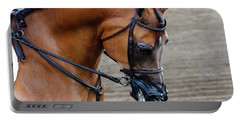 Arabian Show Horse Portable Battery Charger