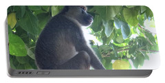 Baboon Sits Guard  Portable Battery Charger
