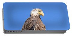 Bald Eagle Juvenile Perched Portable Battery Charger