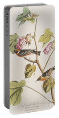 Bay Breasted Warbler Portable Battery Charger by John James Audubon