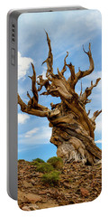 Bristlecone Pine Tree 3 Portable Battery Charger