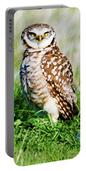 Portable Battery Charger featuring the photograph Burrowing Owl by Norman Hall