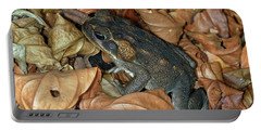 Cane Toad Portable Battery Charger