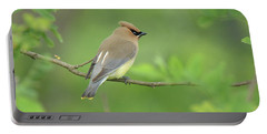 Cedar Waxwing Portable Battery Charger by Alan Lenk