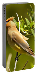 Cedar Waxwing Closeup Portable Battery Charger by Adam Jewell