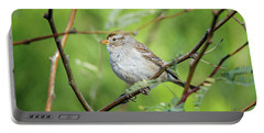 Portable Battery Charger featuring the photograph Chipping Sparrow by Tam Ryan