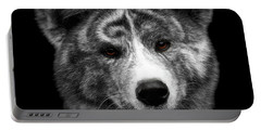 Closeup Portrait Of Akita Inu Dog On Isolated Black Background Portable Battery Charger by Sergey Taran