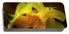 Portable Battery Charger featuring the photograph 2 Daffodils by John Harding
