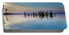 Portable Battery Charger featuring the photograph Dismal Swamp 2016 by Kevin Blackburn