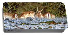 Fallow Deer In England Portable Battery Charger by Chris Smith